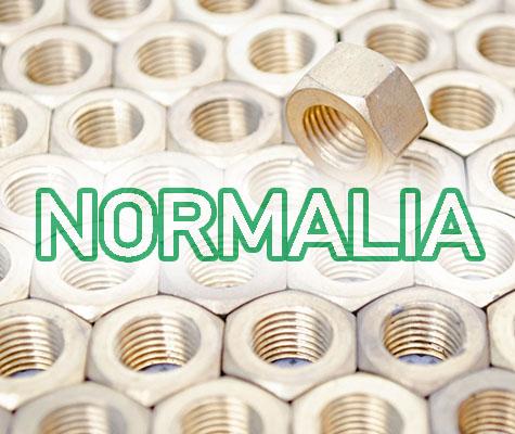 obraz-normalia-1